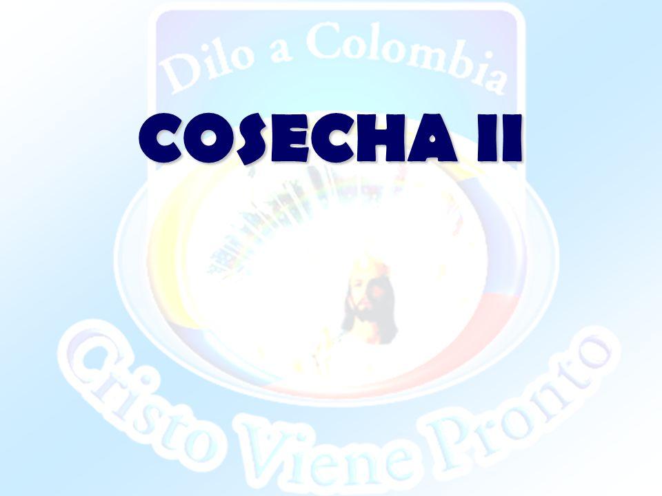COSECHA II