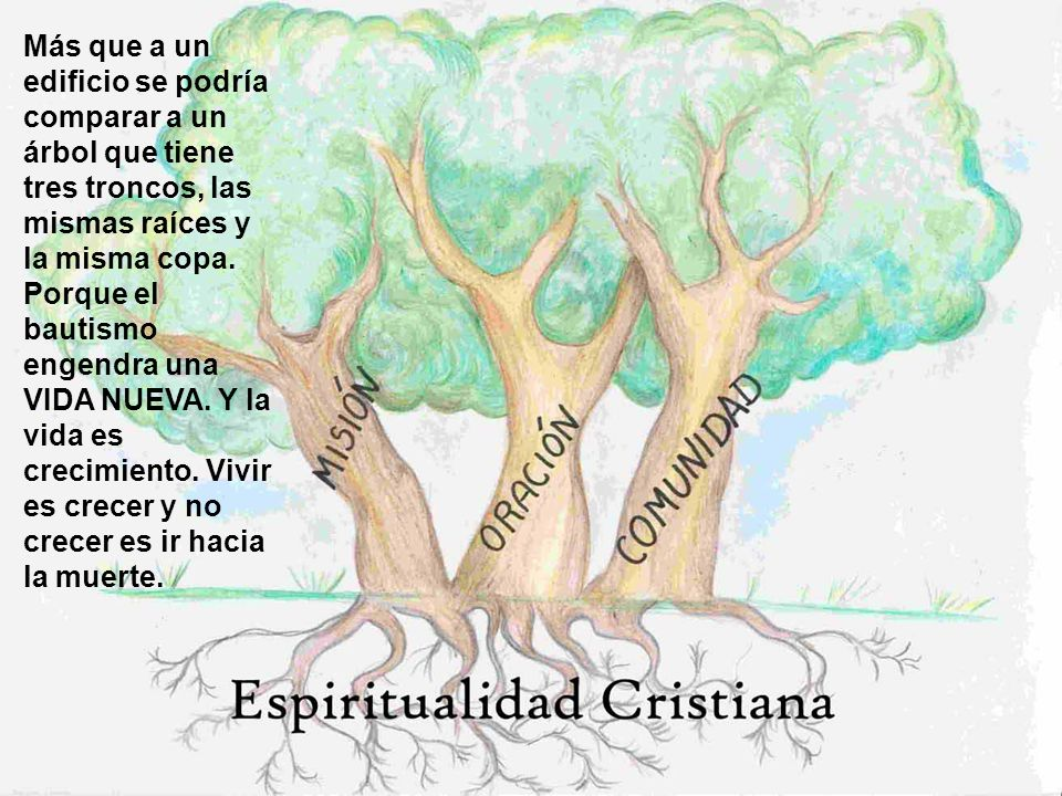 Más que a un edificio se podría comparar a un árbol que tiene tres troncos, las mismas raíces y la misma copa.