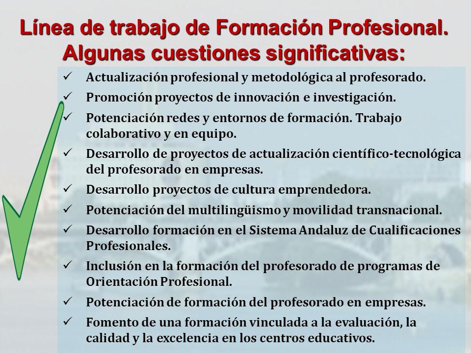 Línea de trabajo de Formación Profesional