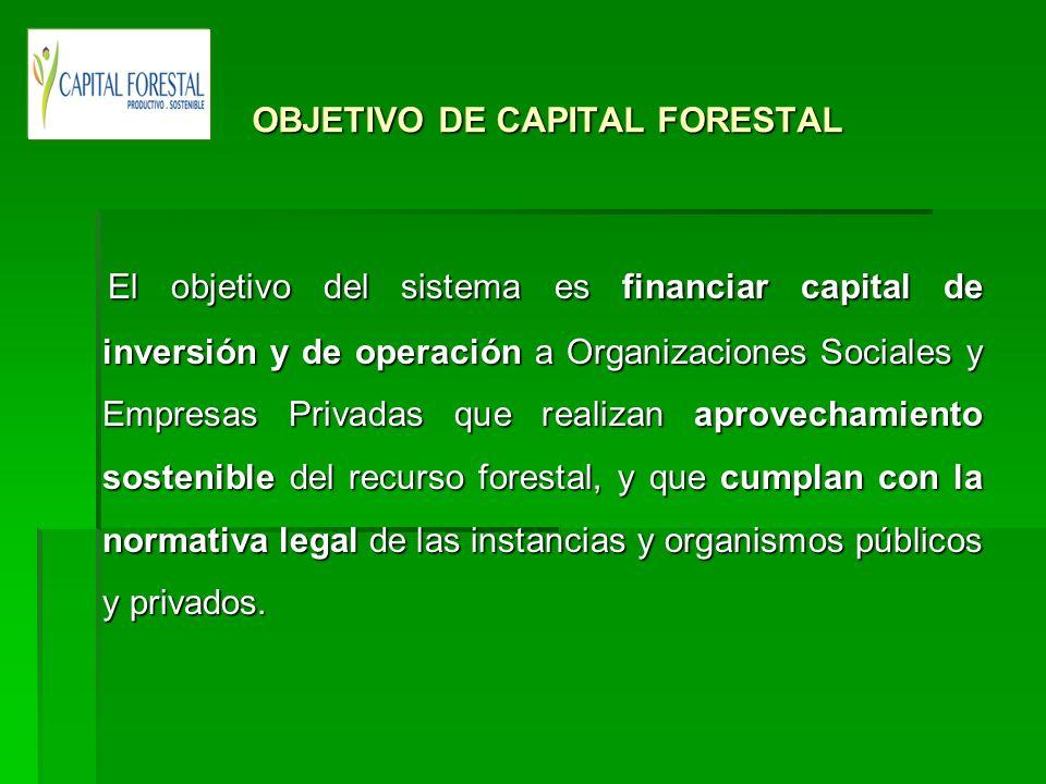 OBJETIVO DE CAPITAL FORESTAL