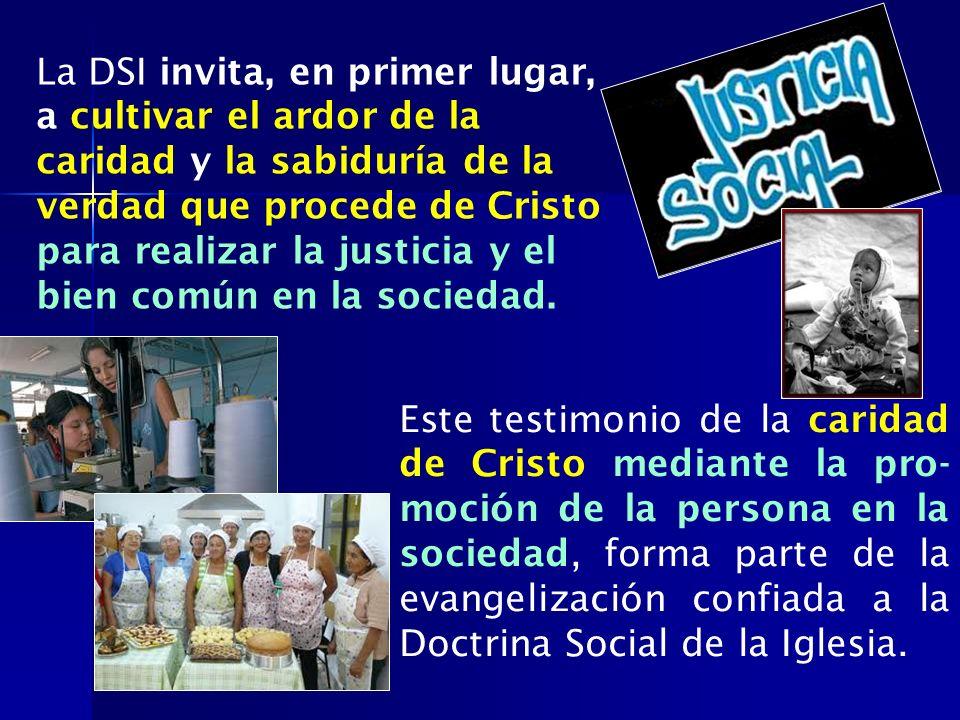 La DSI invita, en primer lugar, a cultivar el ardor de la caridad y la sabiduría de la verdad que procede de Cristo para realizar la justicia y el bien común en la sociedad.