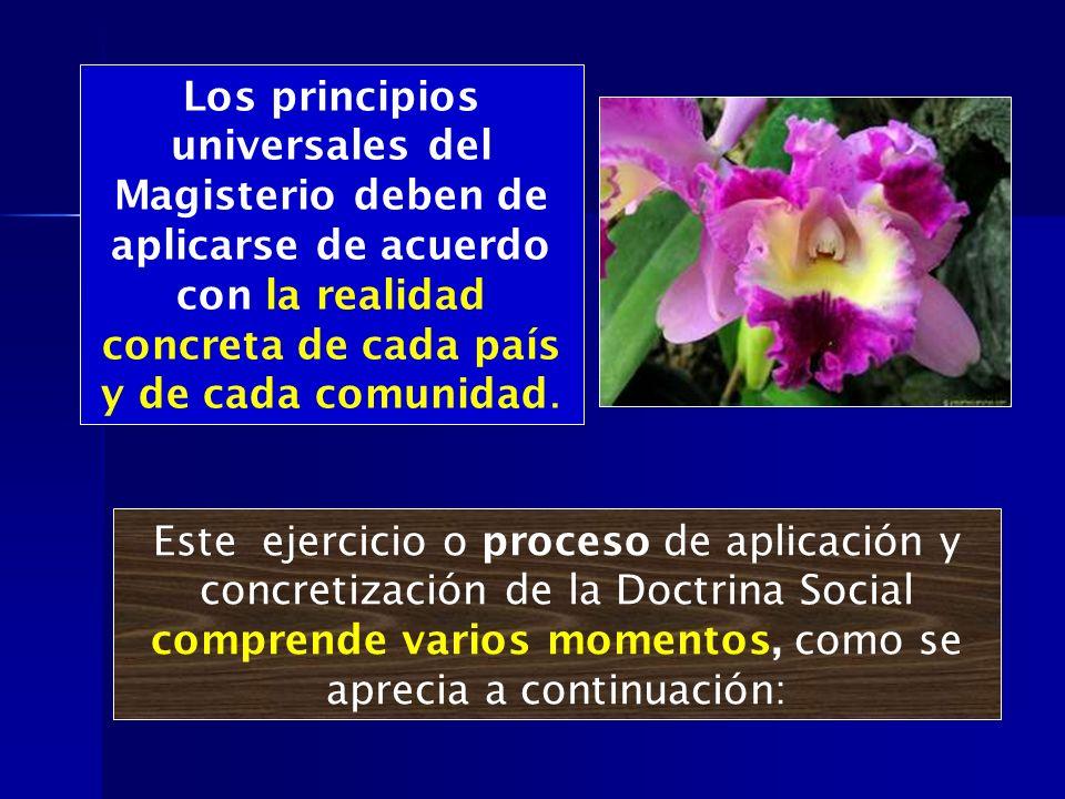 Los principios universales del Magisterio deben de aplicarse de acuerdo con la realidad concreta de cada país y de cada comunidad.