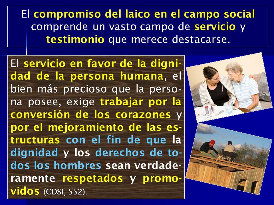 El compromiso del laico en el campo social comprende un vasto campo de servicio y testimonio que merece destacarse.