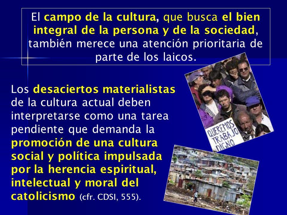 El campo de la cultura, que busca el bien integral de la persona y de la sociedad, también merece una atención prioritaria de parte de los laicos.