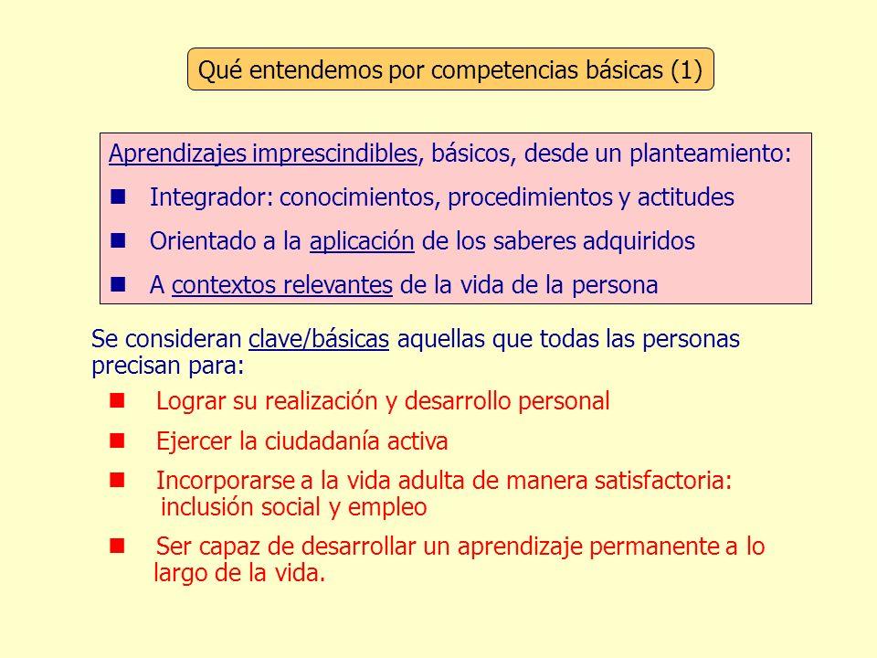 Qué entendemos por competencias básicas (1)