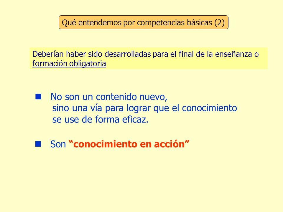 Qué entendemos por competencias básicas (2)