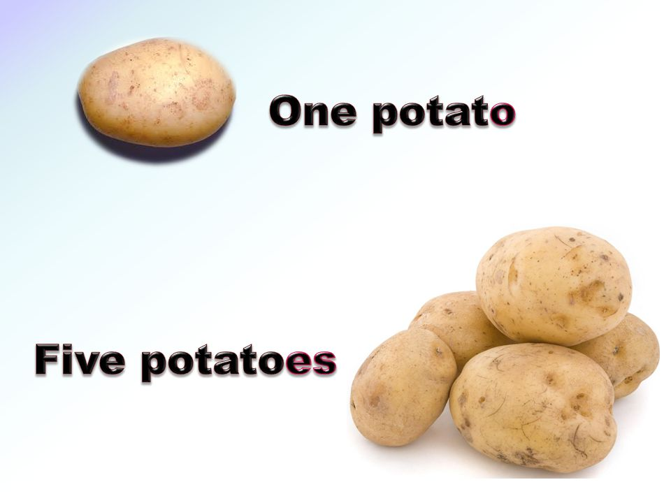 One potato Five potatoes
