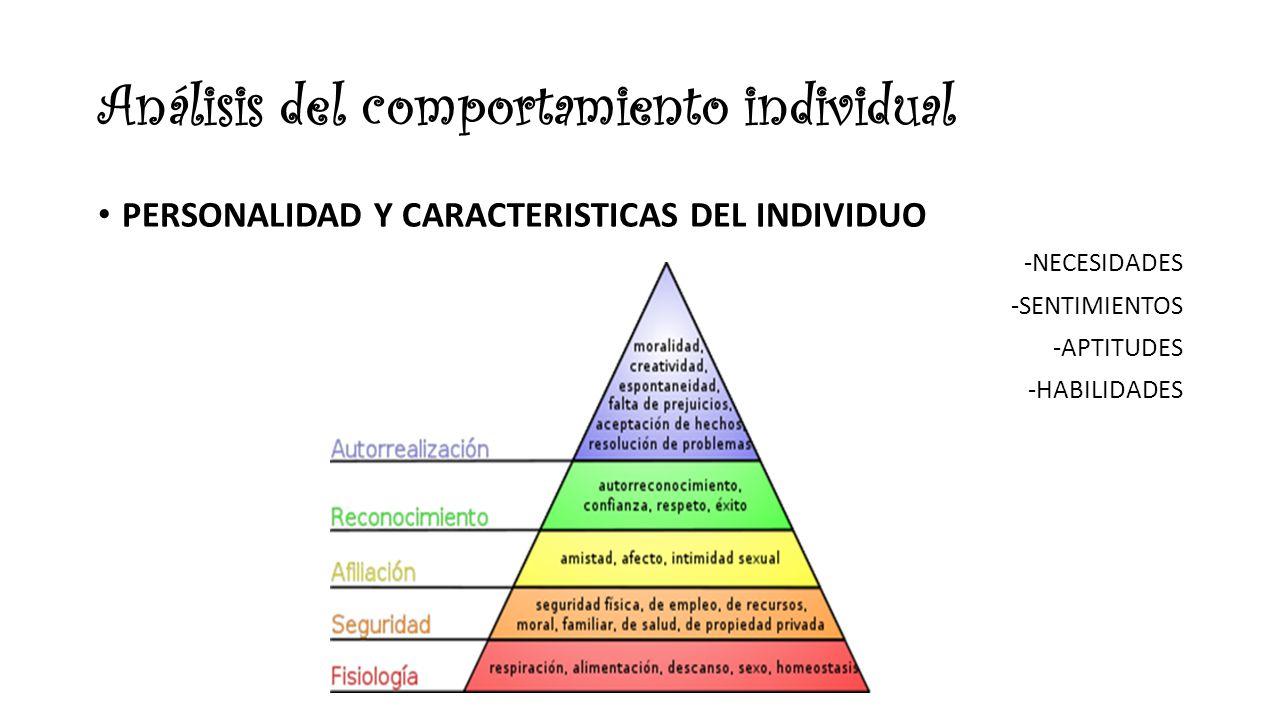 Análisis del comportamiento individual