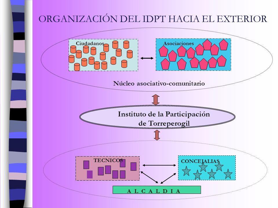 ORGANIZACIÓN DEL IDPT HACIA EL EXTERIOR