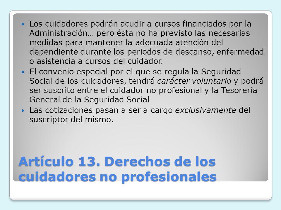 Artículo 13. Derechos de los cuidadores no profesionales