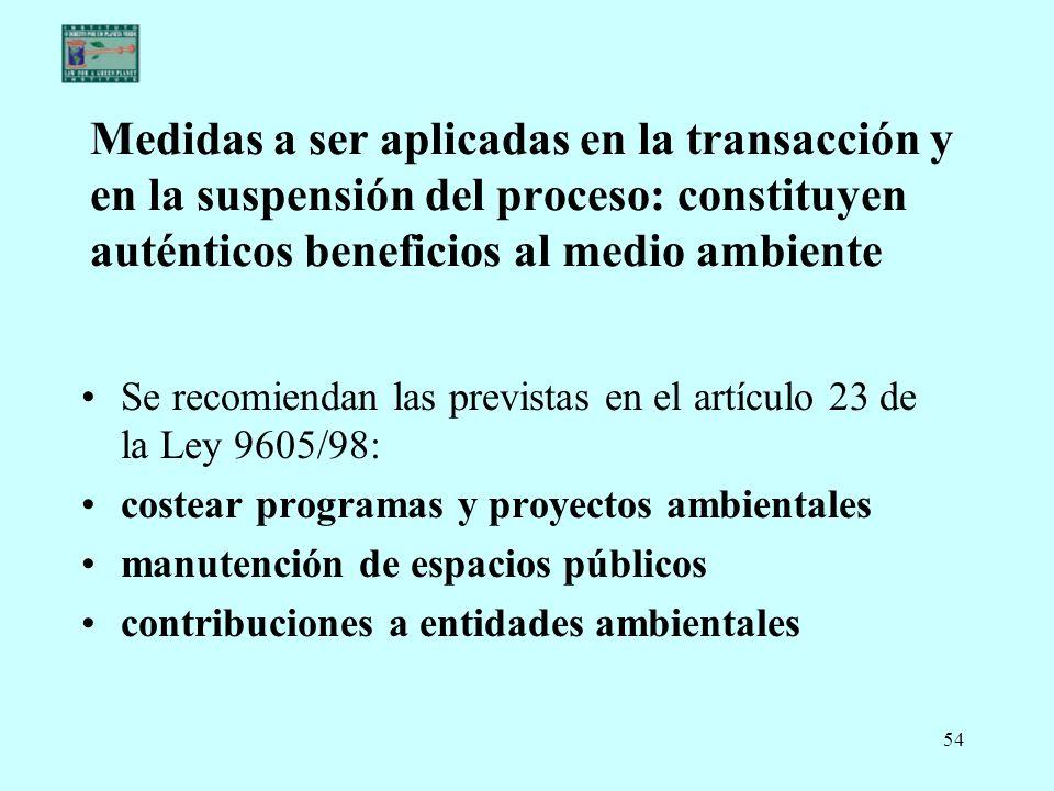 Medidas a ser aplicadas en la transacción y en la suspensión del proceso: constituyen auténticos beneficios al medio ambiente