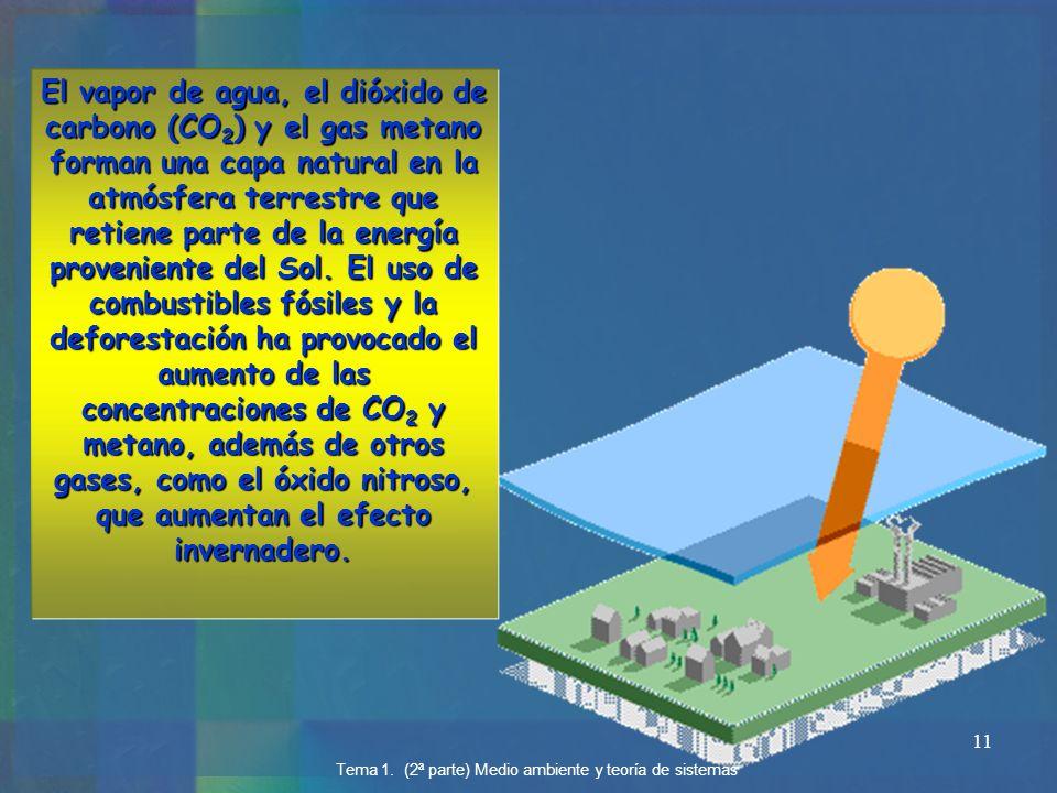 El vapor de agua, el dióxido de carbono (CO2) y el gas metano forman una capa natural en la atmósfera terrestre que retiene parte de la energía proveniente del Sol. El uso de combustibles fósiles y la deforestación ha provocado el aumento de las concentraciones de CO2 y metano, además de otros gases, como el óxido nitroso, que aumentan el efecto invernadero.