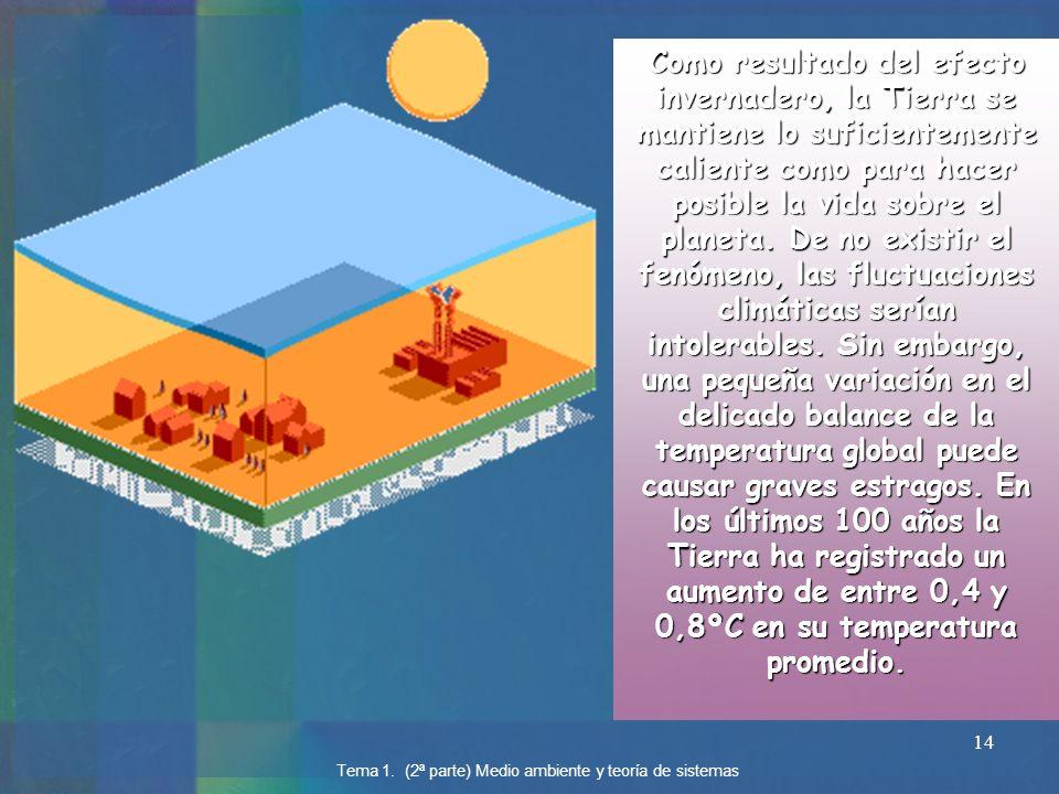 Como resultado del efecto invernadero, la Tierra se mantiene lo suficientemente caliente como para hacer posible la vida sobre el planeta. De no existir el fenómeno, las fluctuaciones climáticas serían intolerables. Sin embargo, una pequeña variación en el delicado balance de la temperatura global puede causar graves estragos. En los últimos 100 años la Tierra ha registrado un aumento de entre 0,4 y 0,8ºC en su temperatura promedio.