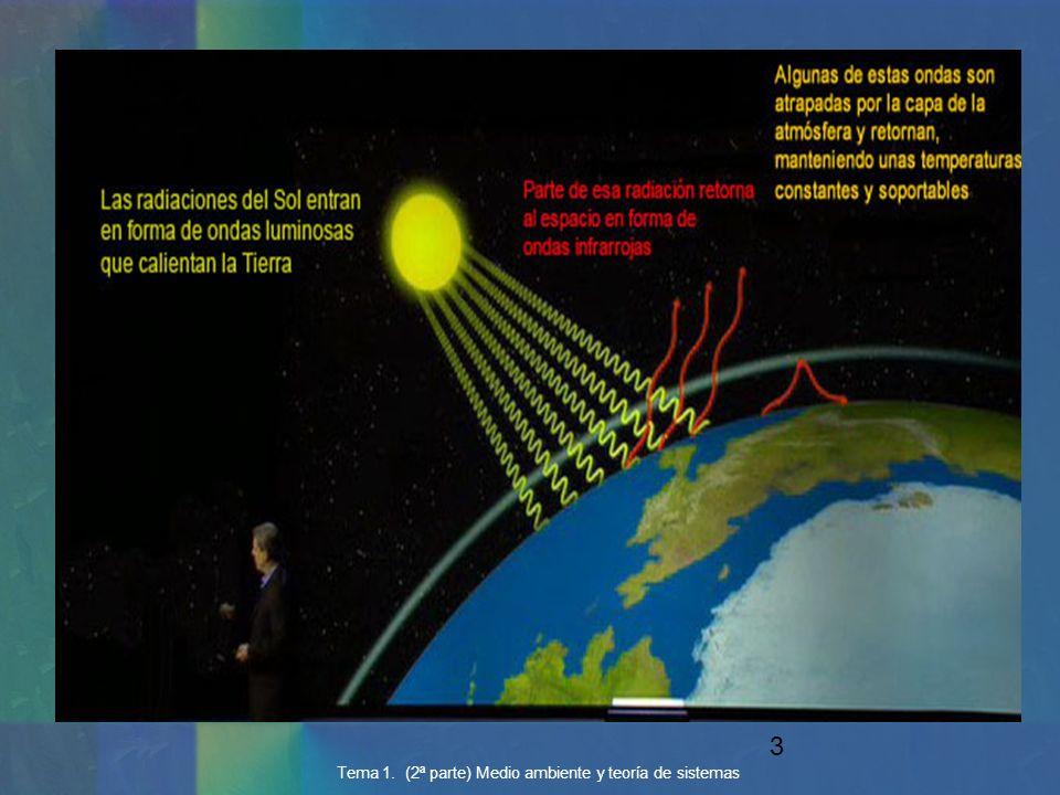Tema 1. (2ª parte) Medio ambiente y teoría de sistemas