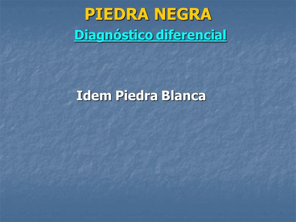MICOSIS SUPERFICIALES PIEDRA BLANCA Y PIEDRA NEGRA - ppt