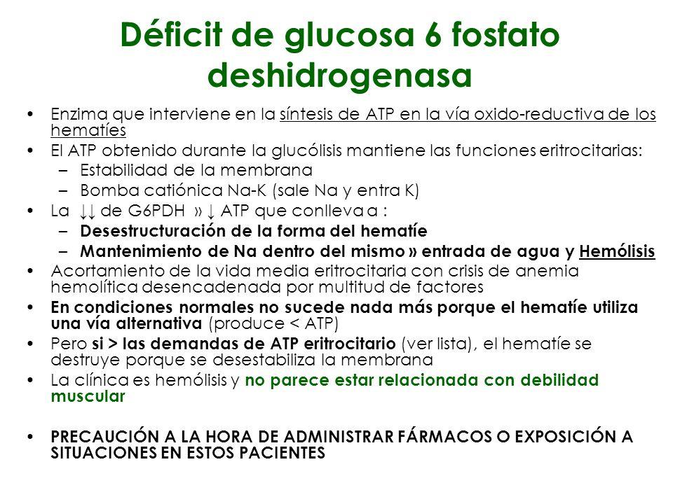 Déficit de glucosa 6 fosfato deshidrogenasa