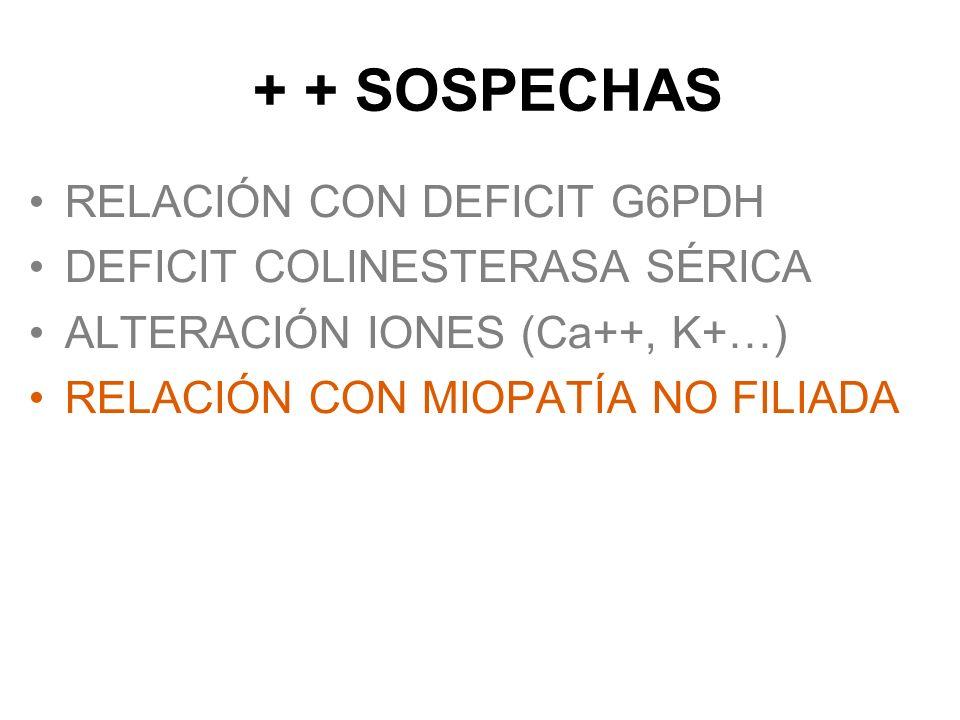 + + SOSPECHAS RELACIÓN CON DEFICIT G6PDH DEFICIT COLINESTERASA SÉRICA
