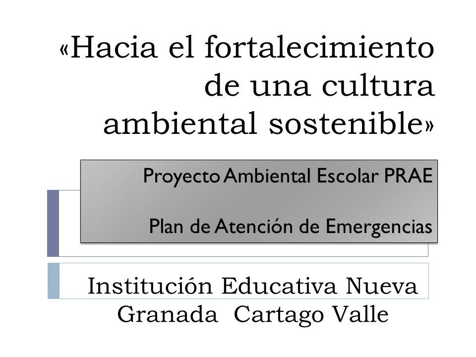 Proyecto Ambiental Escolar Prae Plan De Atenci N De