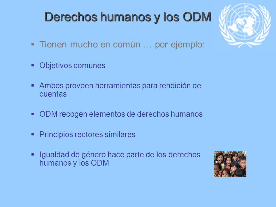 Derechos humanos y los ODM