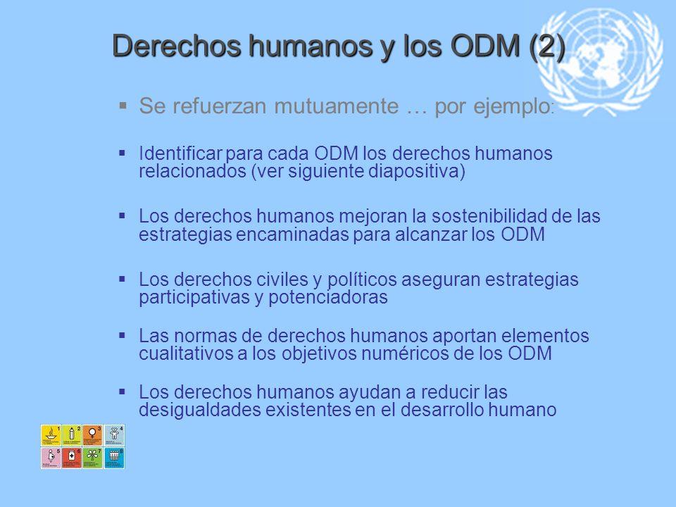 Derechos humanos y los ODM (2)