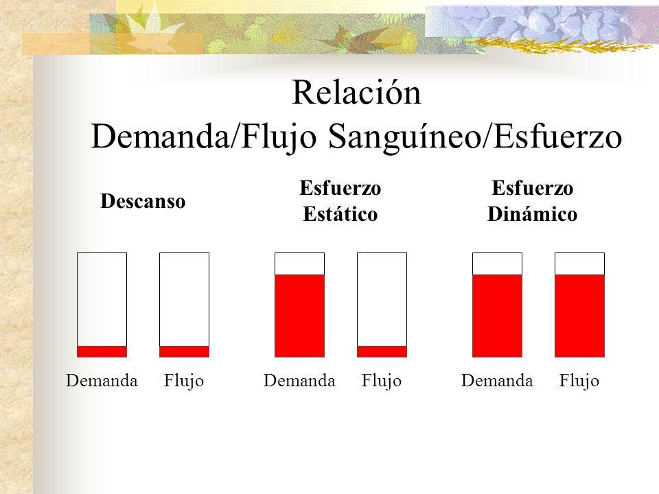 Relación Demanda/Flujo Sanguíneo/Esfuerzo