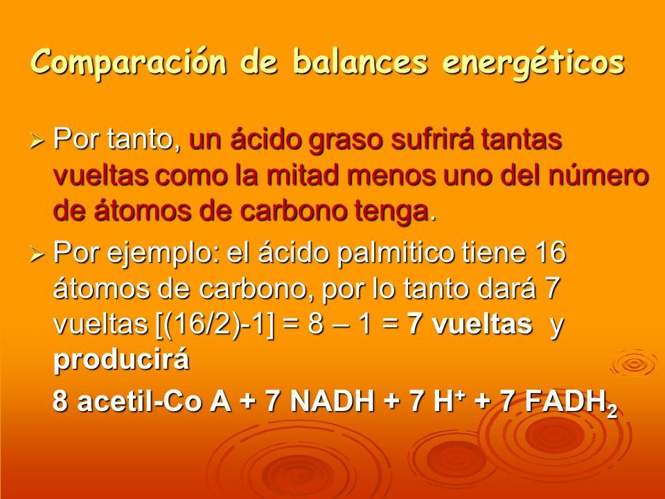 Comparación de balances energéticos