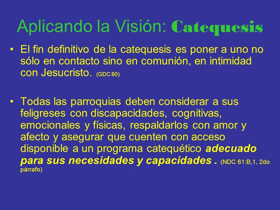Aplicando la Visión: Catequesis