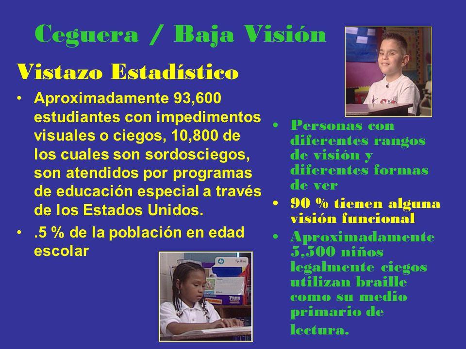 Ceguera / Baja Visión Vistazo Estadístico