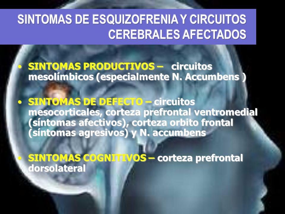 SINTOMAS DE ESQUIZOFRENIA Y CIRCUITOS CEREBRALES AFECTADOS