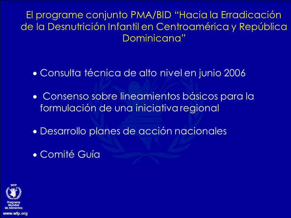 Consulta técnica de alto nivel en junio 2006
