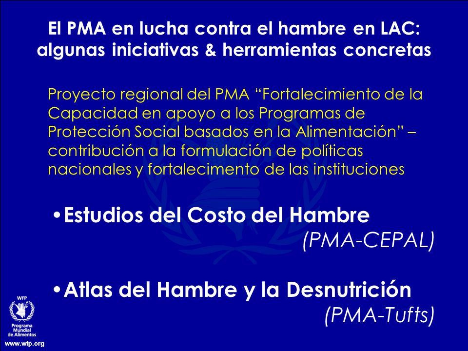 Estudios del Costo del Hambre (PMA-CEPAL)