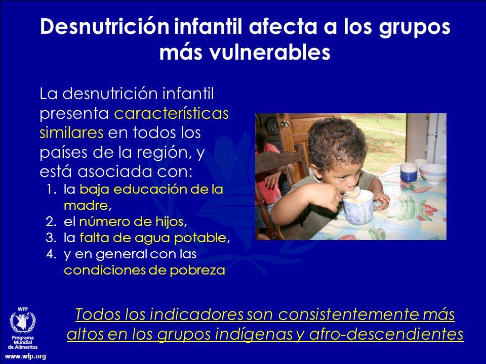 Desnutrición infantil afecta a los grupos más vulnerables