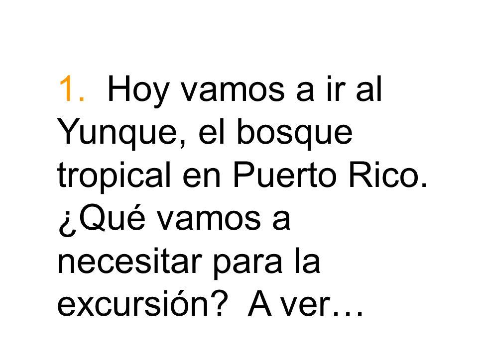 1. Hoy vamos a ir al Yunque, el bosque tropical en Puerto Rico