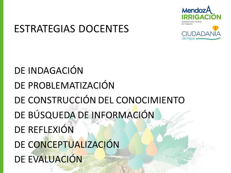 ESTRATEGIAS DOCENTES DE INDAGACIÓN DE PROBLEMATIZACIÓN