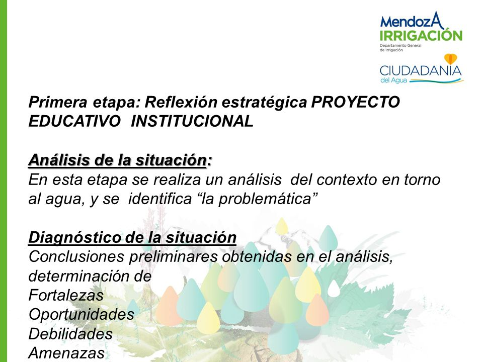 Primera etapa: Reflexión estratégica PROYECTO EDUCATIVO INSTITUCIONAL