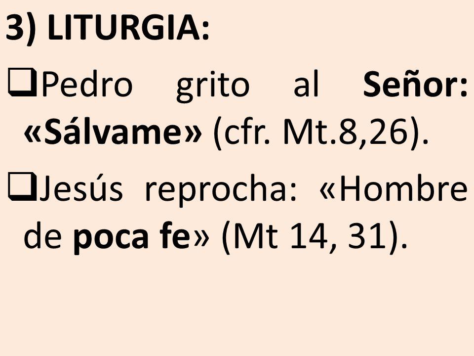 3) LITURGIA: Pedro grito al Señor: «Sálvame» (cfr.