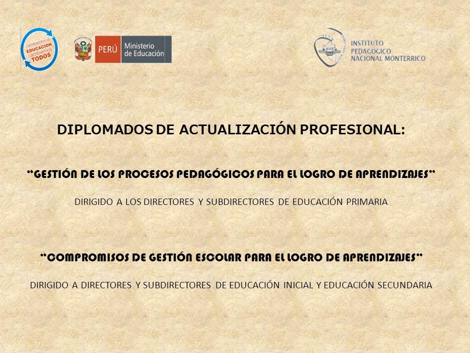 DIPLOMADOS DE ACTUALIZACIÓN PROFESIONAL: