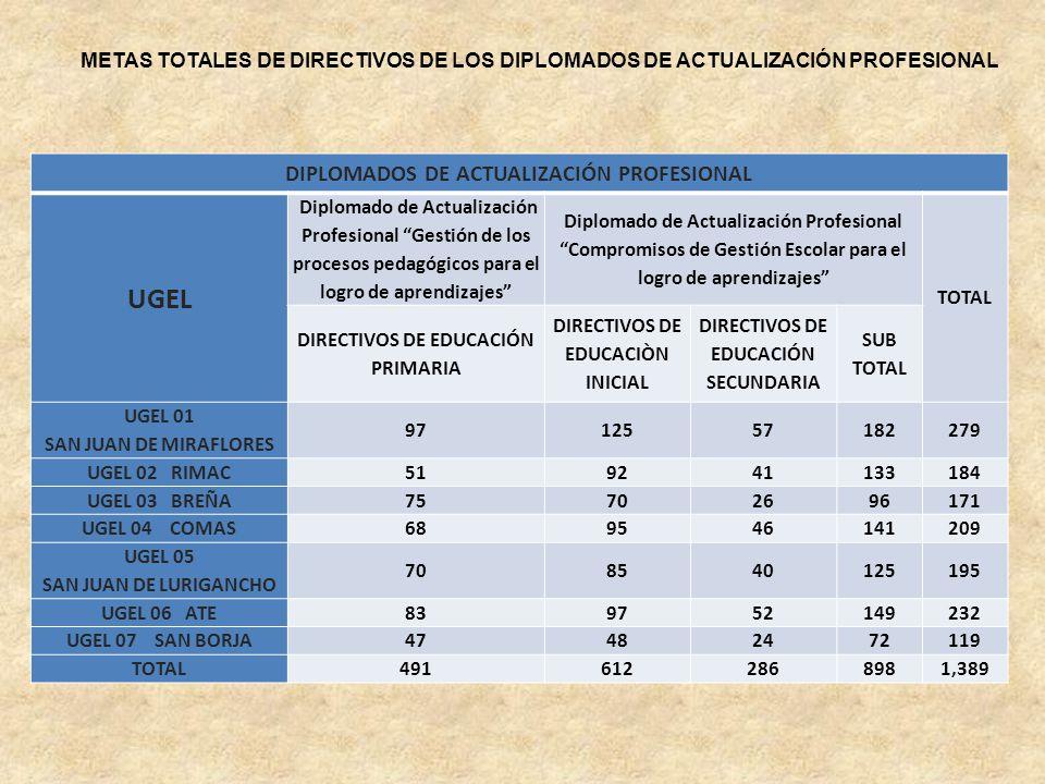 UGEL DIPLOMADOS DE ACTUALIZACIÓN PROFESIONAL