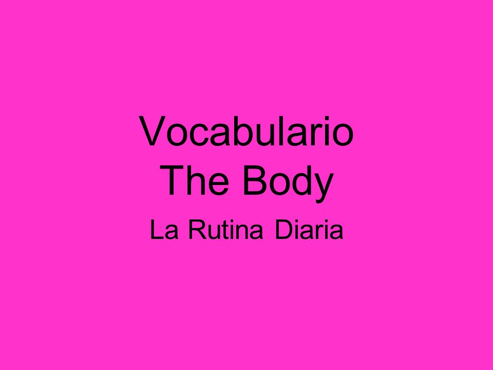 Vocabulario The Body La Rutina Diaria