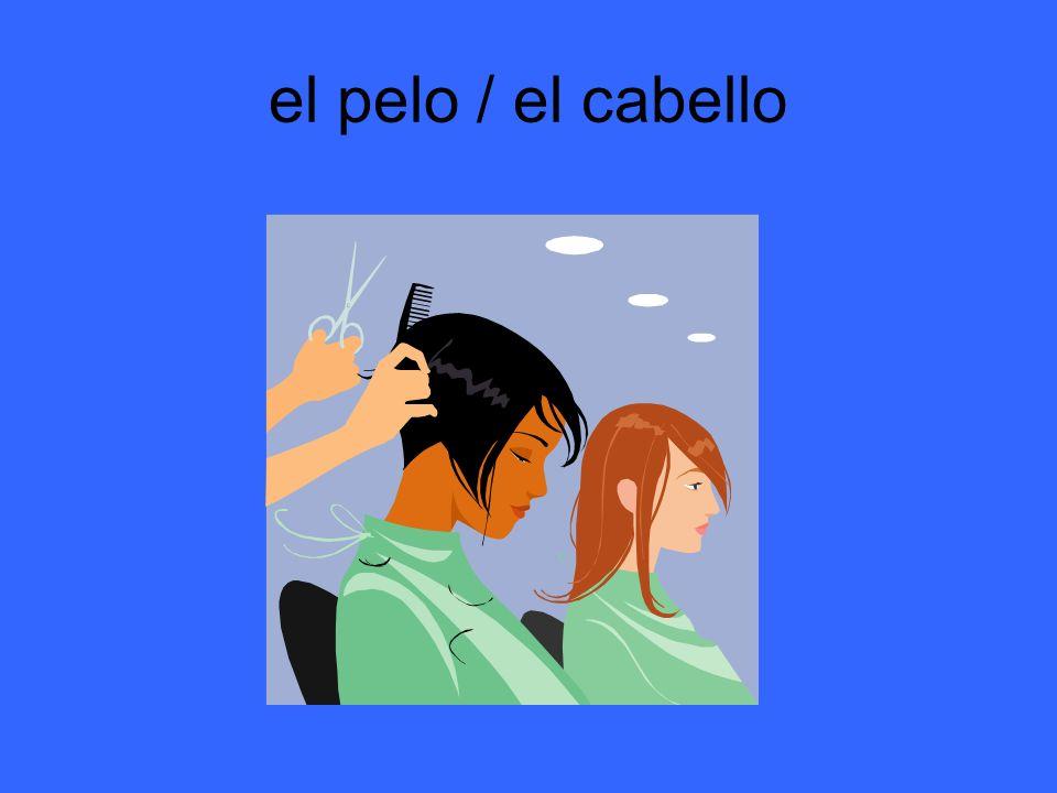 el pelo / el cabello