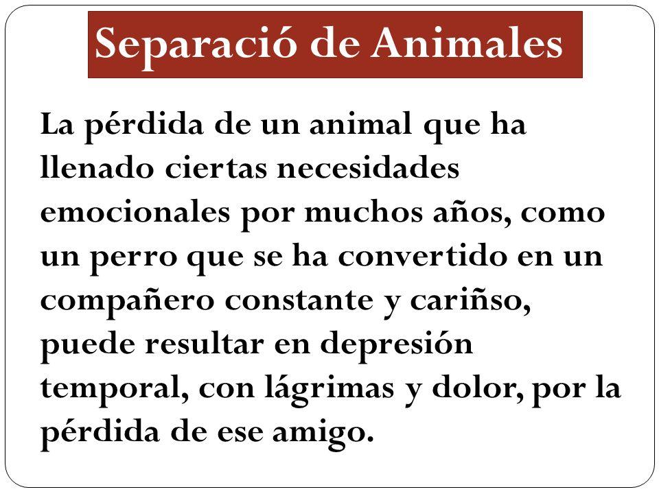 Separació de Animales