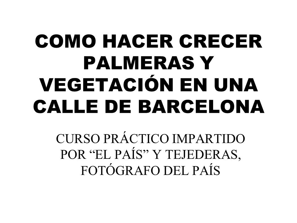 COMO HACER CRECER PALMERAS Y VEGETACIÓN EN UNA CALLE DE BARCELONA