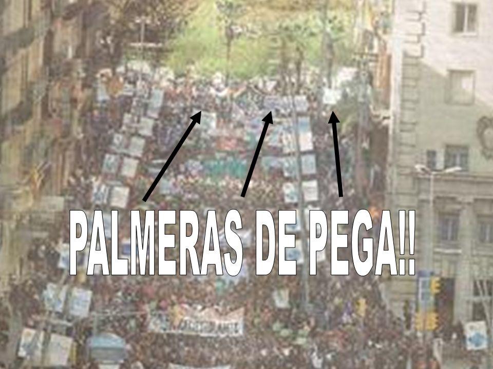 PALMERAS DE PEGA!!