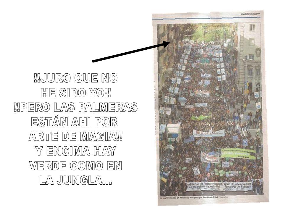 !!JURO QUE NO HE SIDO YO!! !!PERO LAS PALMERAS. ESTÁN AHI POR. ARTE DE MAGIA!! Y ENCIMA HAY. VERDE COMO EN.