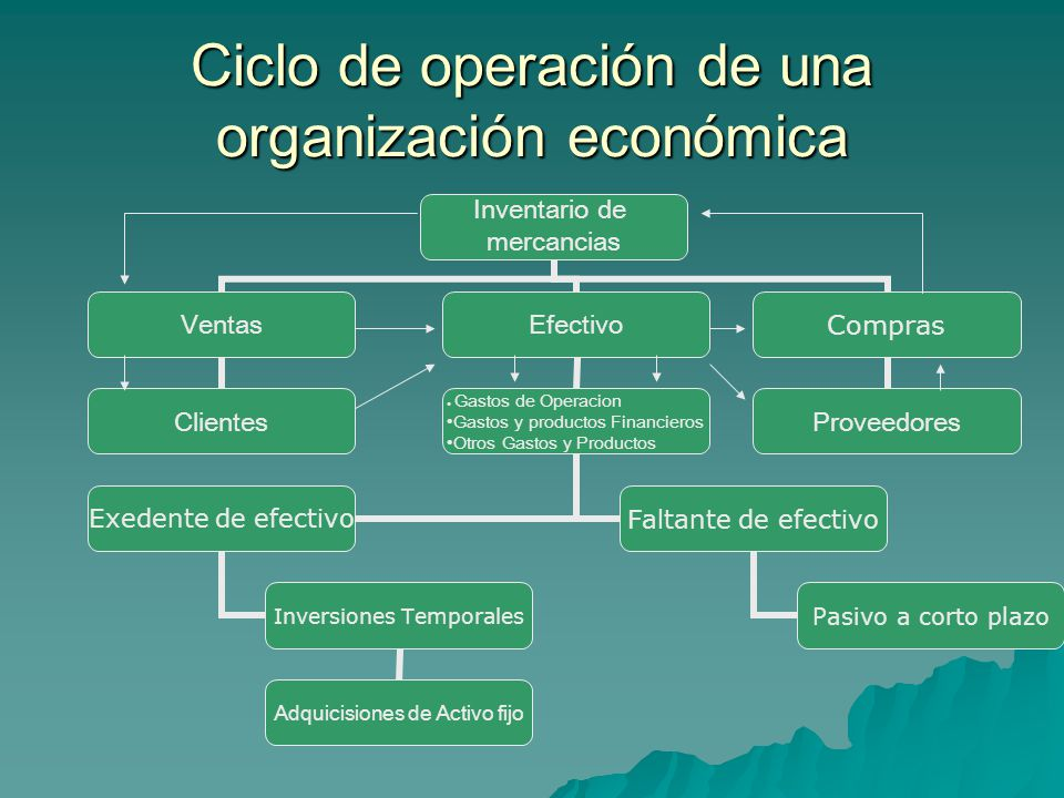 Ciclo de operación de una organización económica