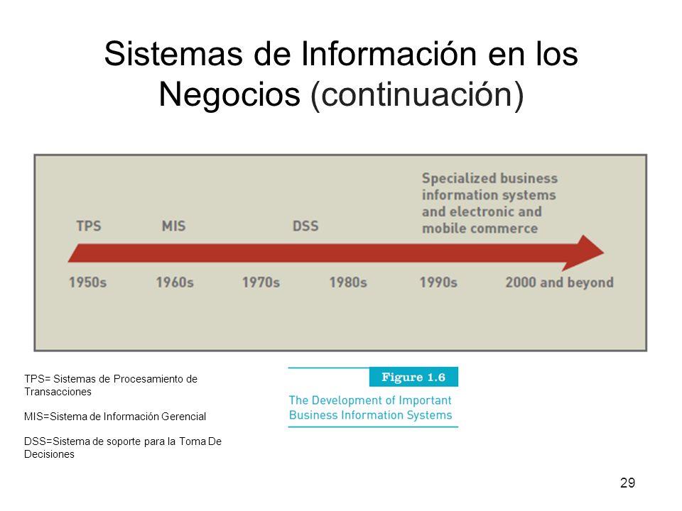 Sistemas de Información en los Negocios (continuación)