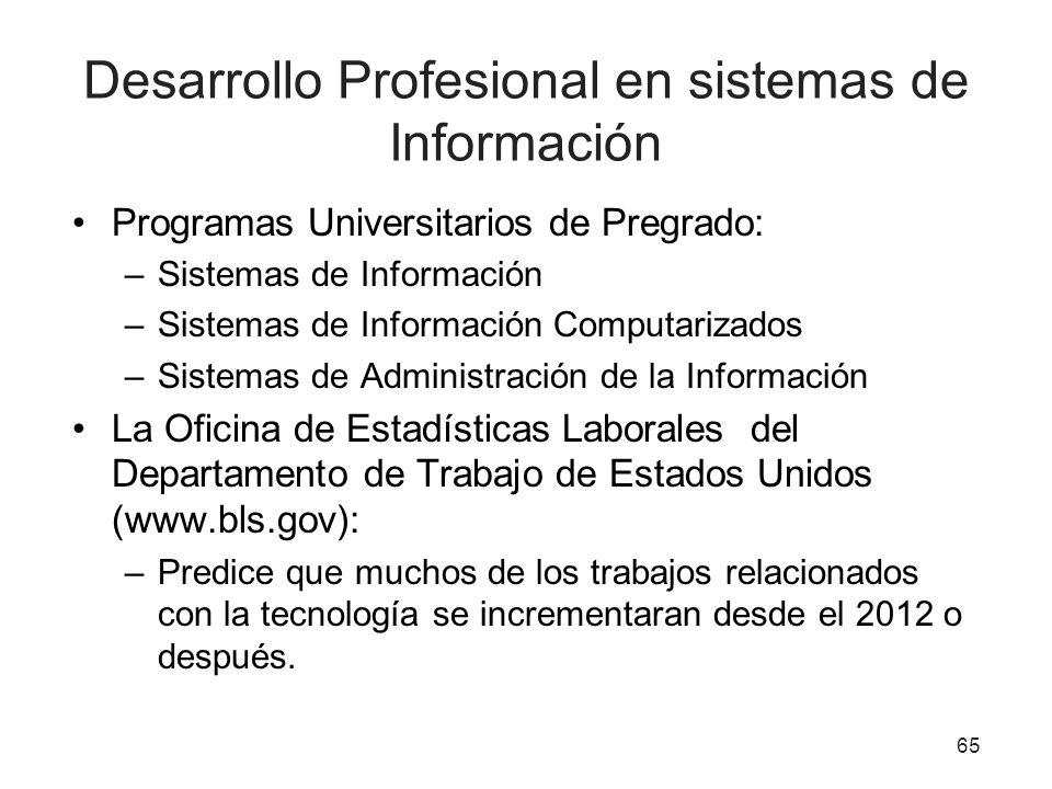 Desarrollo Profesional en sistemas de Información