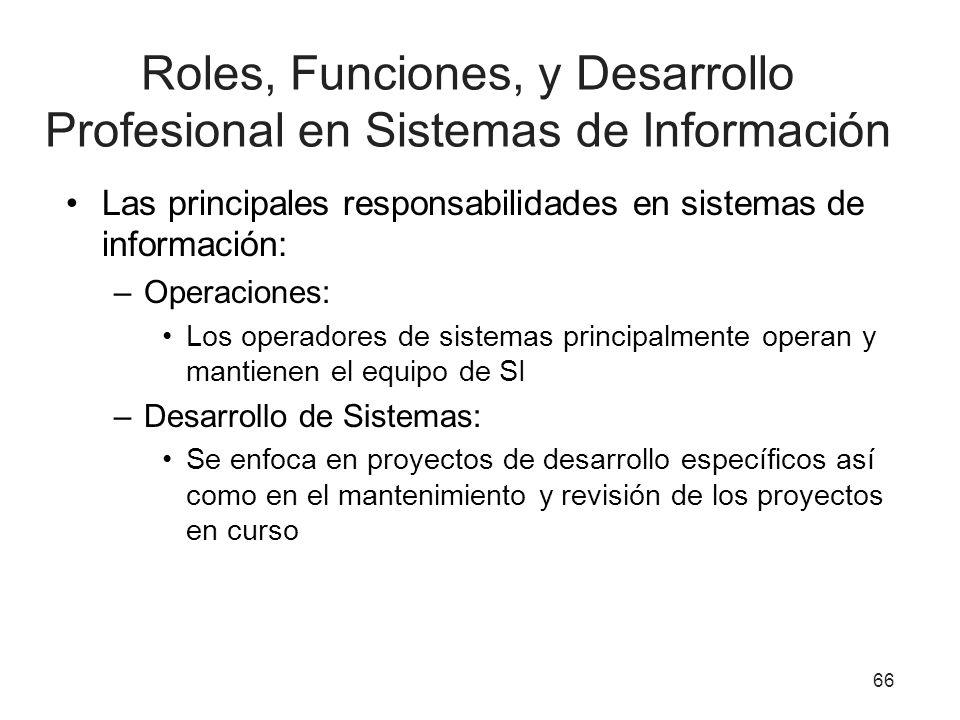 Roles, Funciones, y Desarrollo Profesional en Sistemas de Información