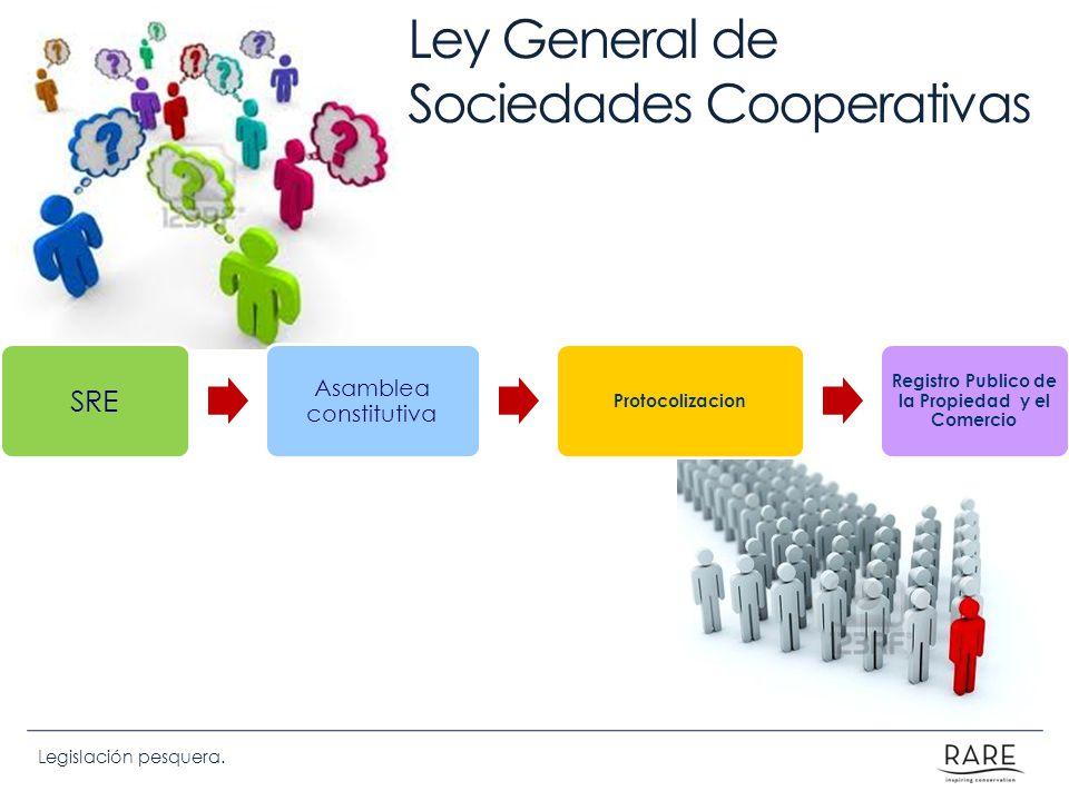 Ley De Sociedades Comerciales Comentada Nissen Pdf Ley De
