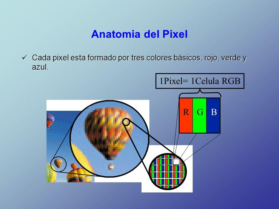 Único Grises Anatomía Corriente Tv Modelo - Imágenes de Anatomía ...